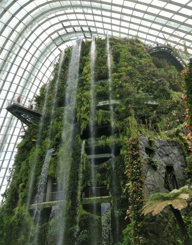 Waterfall, Cloud Forest Dome.