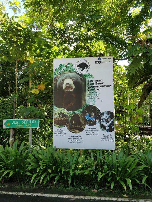 Sun Bear Conservation Centre, Sepilok, Sabah, Borneo.
