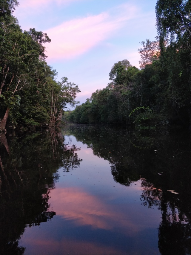 Sunsets on the river. Kinabatangan River, Sabah, Borneo.
