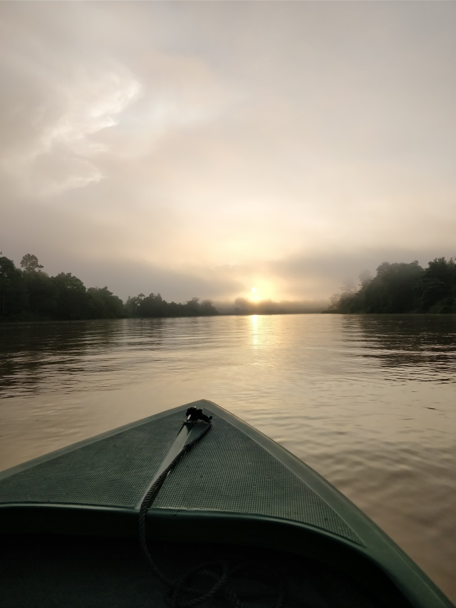 Sunrise over the Kinabatangan River., Sabah, Borneo.
