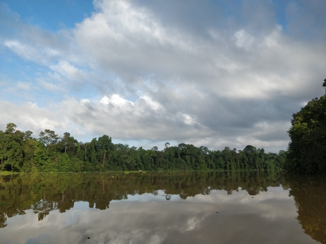 Oxbow lake. Kinabatangan River, Sabah, Borneo.